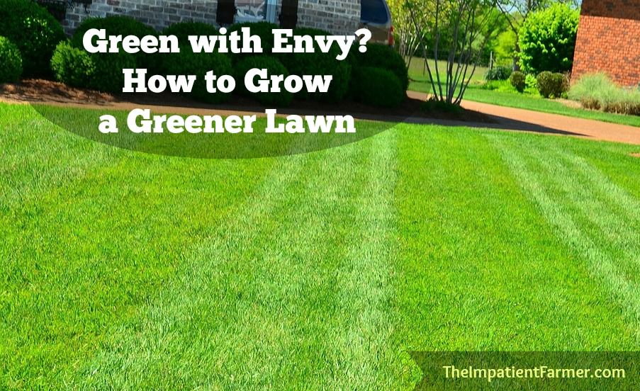 How to get your grass greener. From how to mow a lawn the right way to de-thatching, follow these easy lawn care tips for a greener, healthy lawn.