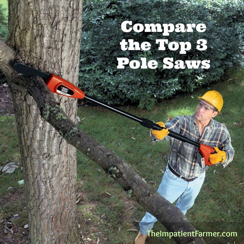 Trying to find the best pole saws? We discuss the three best models on the market and provide thorough pole saw reviews for each.
