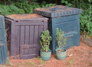Compost bins in the garden