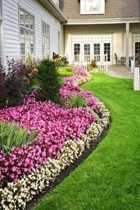Create a distinct line between the lawn and the garden bed
