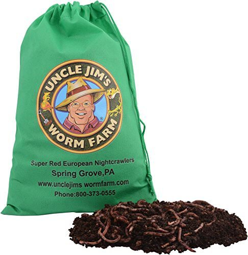 buying compost worms online