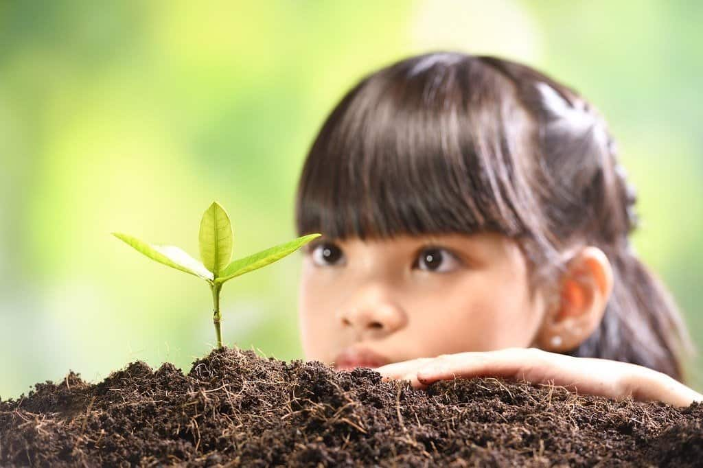 young girl watching small plant growing in ground