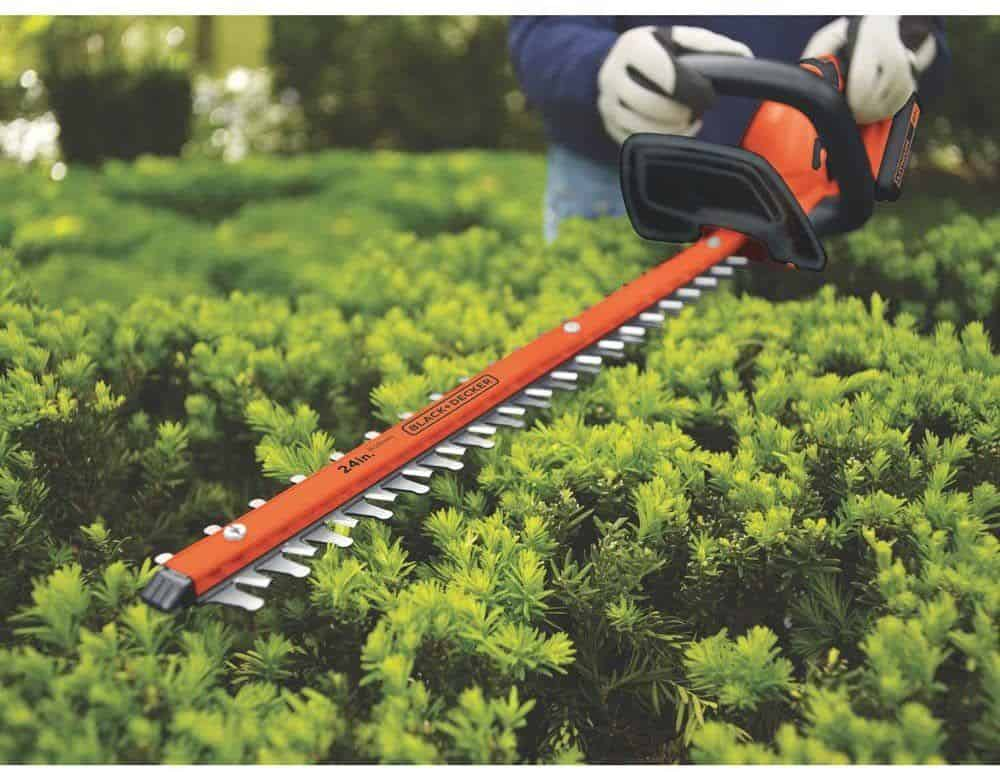Closeup of electric hedge trimmer cutting hedges