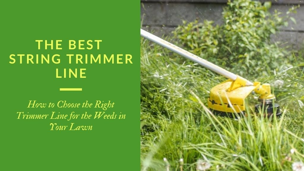 Close up of a yellow string trimmer cutting weeds in the grass - Title: The Best String Trimmer Line - How to Choose the right trimmer line for the weeds in your lawn