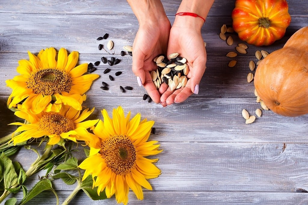 pumpkin and sunflower seeds on a wooden table