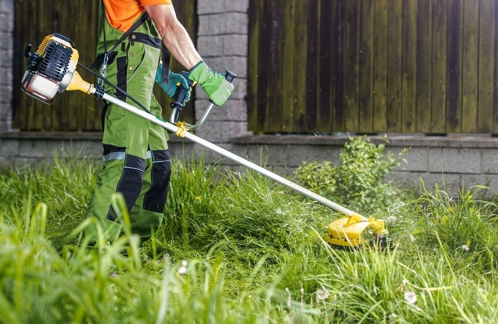string trimmer cutting weeds in the lawn