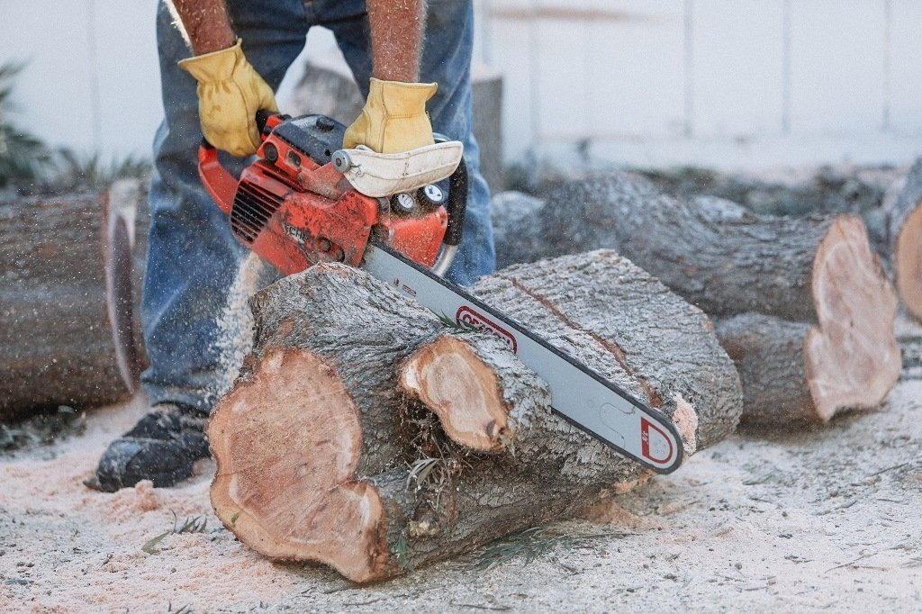 man cutting a tree with a chainsaw wearing thick gloves