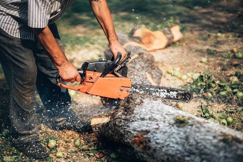 Man wearing the wrong clothing when using a chainsaw.