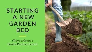 Starting a new gaden bed - 5 Ways to Create a garden plot from scratch