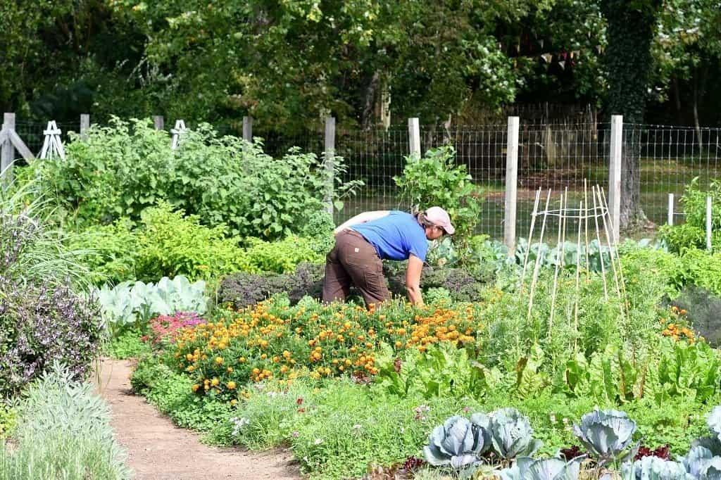 Woman working in community garden.