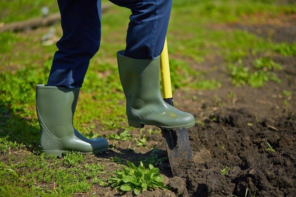 gardener digging a new vegetable plot with shovel