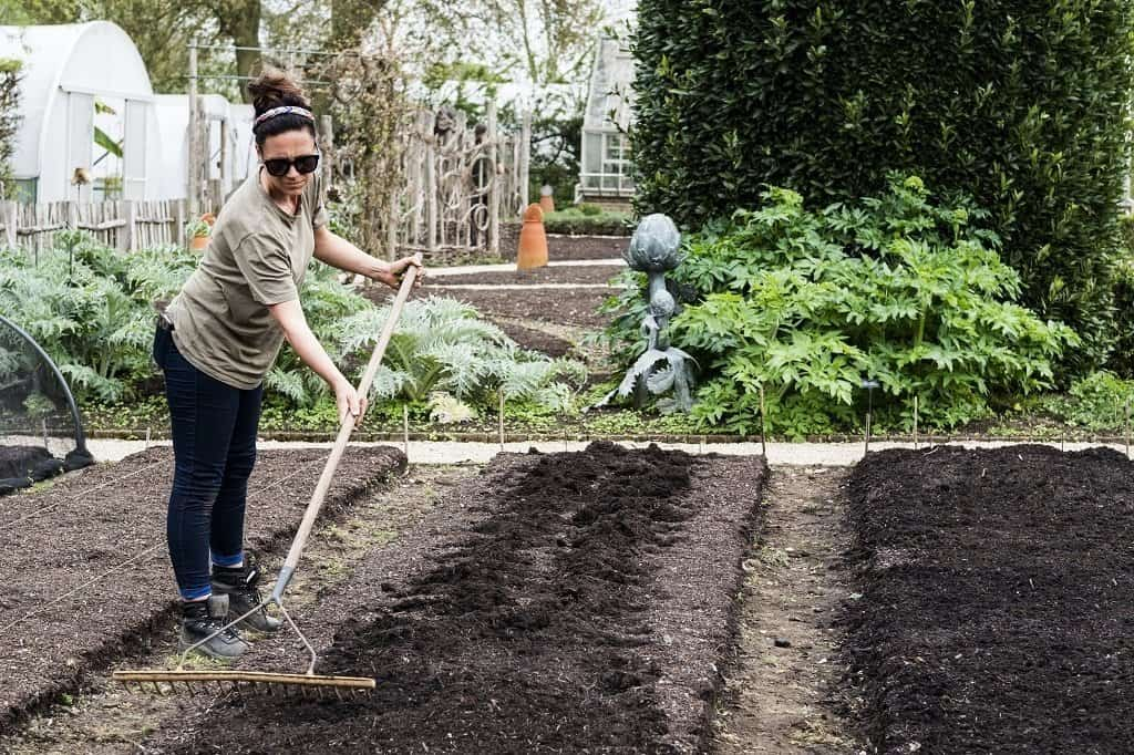 women raking new garden bed