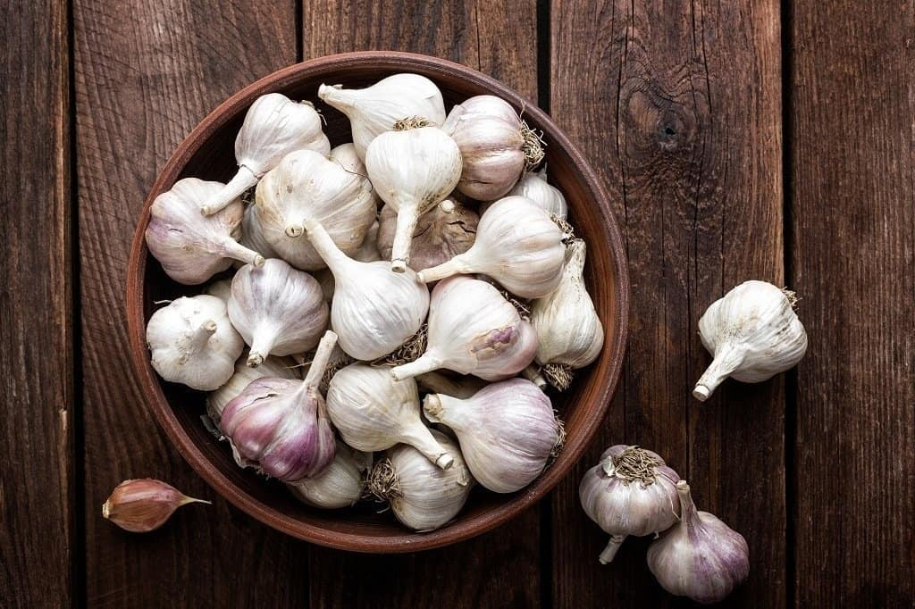 bowl of garlic bulbs