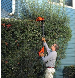 Trimming tall hedges