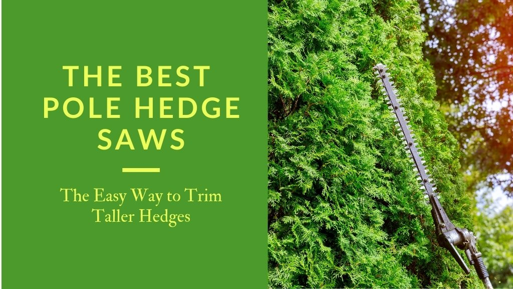 The best pole hedge saws - the easy way to trim taller hedgers