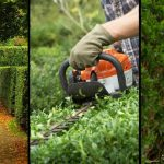 Best Electric Hedge Trimmers in 2021 - Our Reviews of the Top Brands