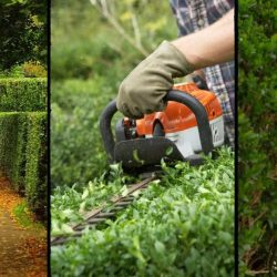 Best Electric Hedge Trimmers in 2021 – Our Reviews of the Top Brands