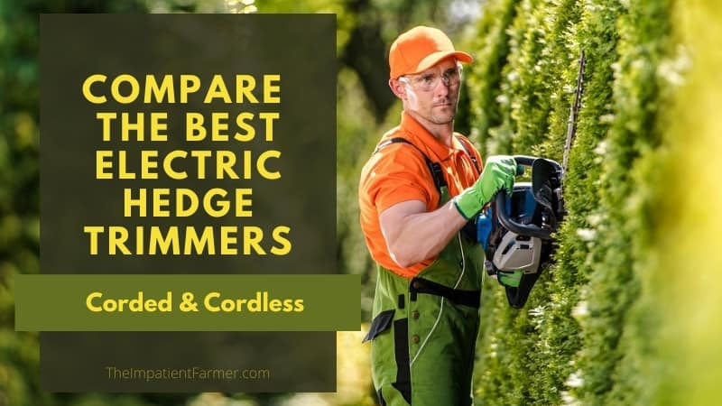 Side view of man cutting bushes with hedge trimmer title text