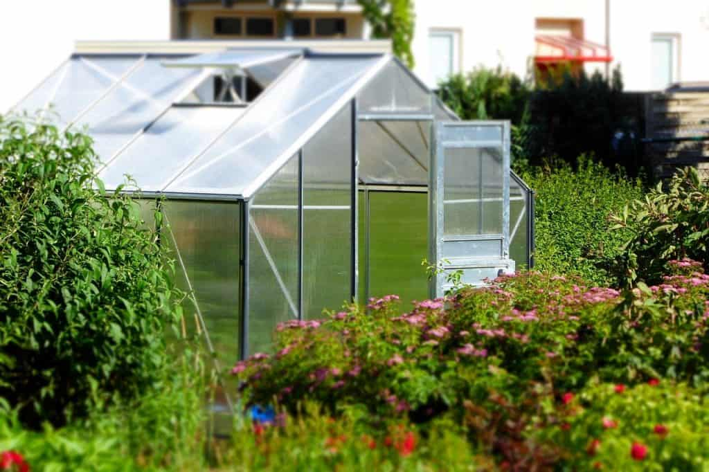 small greenhouse set in the middle of blooming flower garden