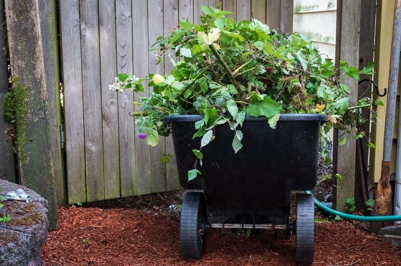 black garden cart filled with weeds and brush