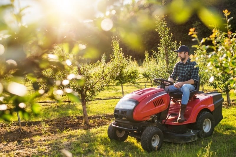 close up of man riding a red lawn tractor through the apple orchard