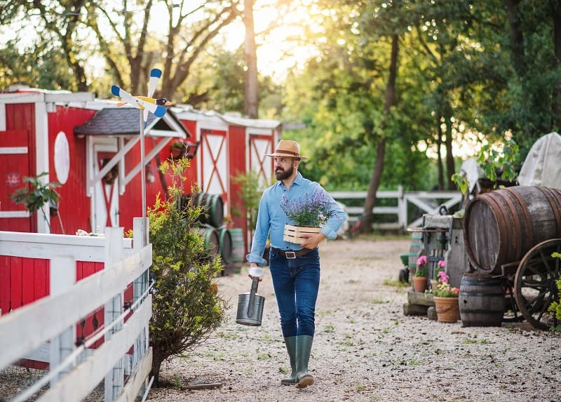 farmer walking outdoors next to red barn holding plants and watering can