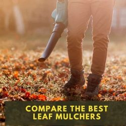 Best Leaf Mulcher and Shredders: Reviews of Our Favorite 3 in 1 Leaf Collection Machines