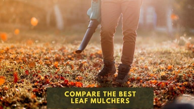 Person with leaf mulcher cleaning up the yard in the fall with orange leaves on the lawn