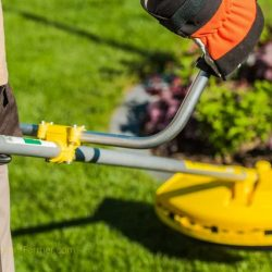 The 5 Best Electric String Trimmers in 2020