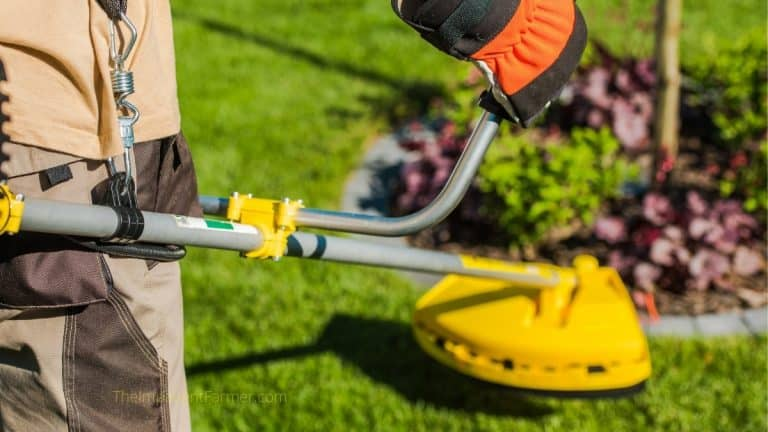 man with bright yellow string trimmer edging the lawn next to a garden bed