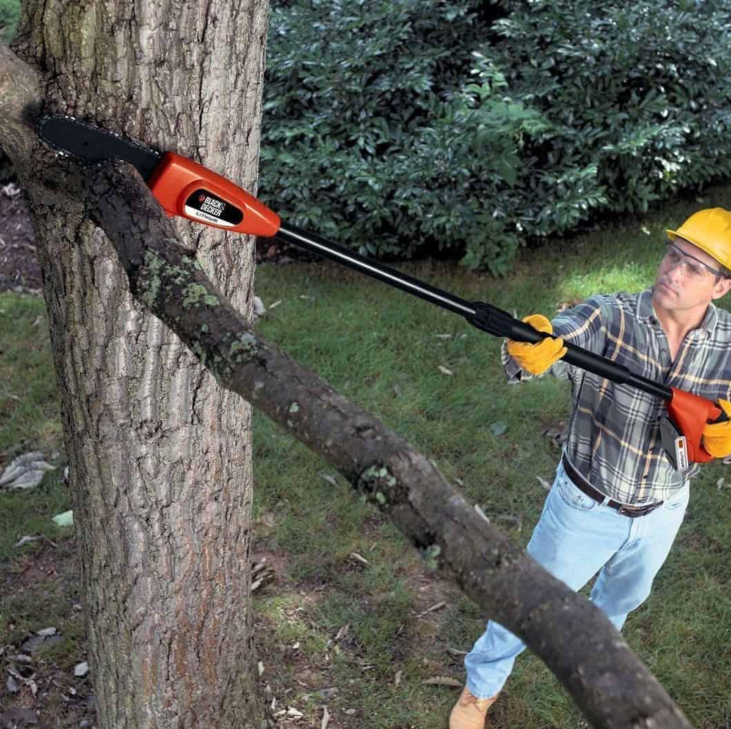 Polesaws can reach up to 15 feet high