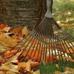 How To Make Leaf Mulch: Turn Leaf Litter into Organic Mulch
