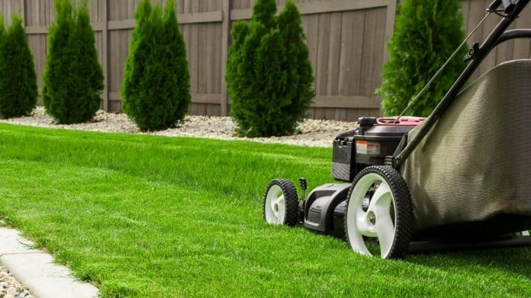 Mowing the grass on a perfect green lawn and neat landscaping