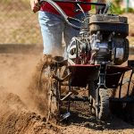 To Till, or Not to Till? That is the Question Every Gardener Asks