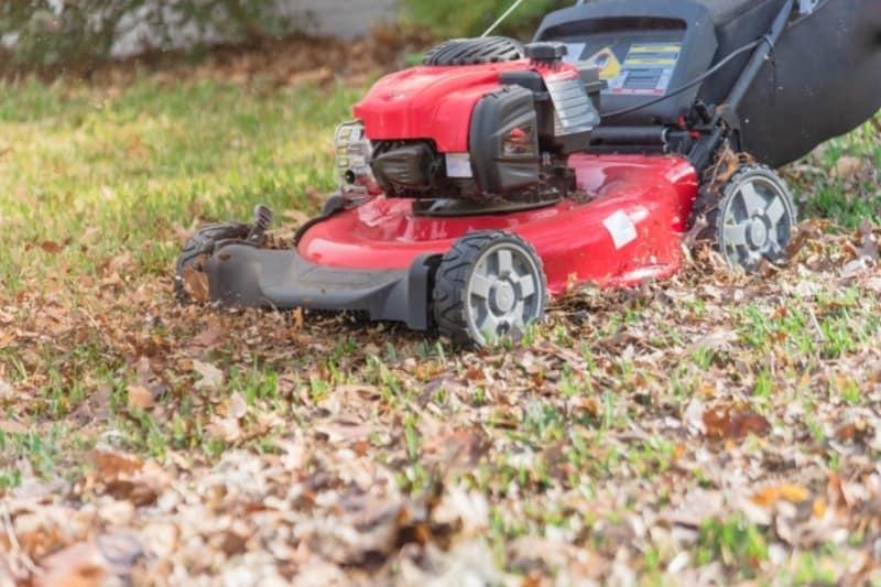 mowing fallen leaves