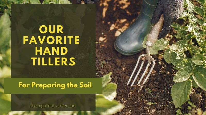 Tilling soil between the rows with a hand tiller - Title Overlay Our favorite hand tillers for preparing the soil